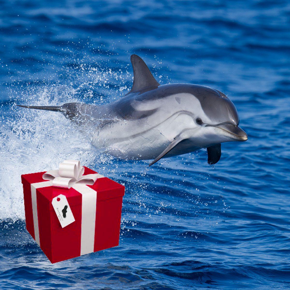 cadeaux1500x1500